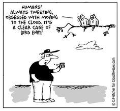 The Lighter Side of the Cloud- Bird Envy Comic Cloud, Tech Humor, Math Books, Light Side, Cloud Computing, Comic Strips, The Funny, How To Fall Asleep