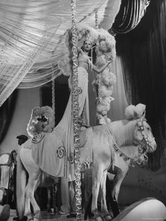 Showgirl with horse
