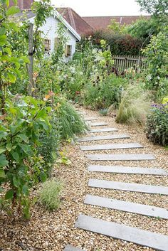 Gravel path with stepping stones – coastal garden Stone Garden Paths, Garden Stepping Stones, Garden Steps, Gravel Path, Gravel Garden, Gravel Front Garden Ideas, Front Garden Path, Front Path, Gravel Landscaping