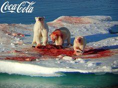 polarbears by quarantine, via Flickr