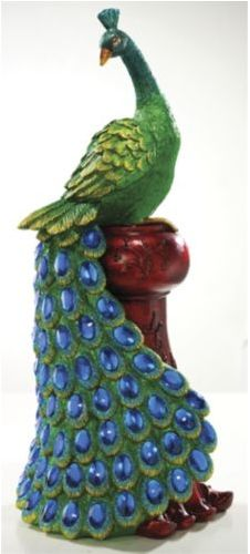 1000 Images About Pretty As A Peacock On Pinterest