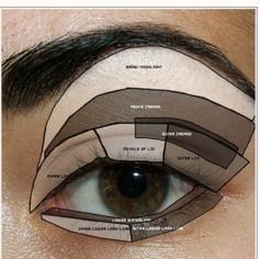 This is great for people who don't know what the different areas of the eye are called. The ones not listed are pretty self explanatory.