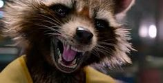 Guardians of the Galaxy Trailer Rocket Raccoon Marvel News, Marvel Dc Comics, R Man, Rocket Raccoon, Star Lord, Voice Actor, Marvel Movies, Guardians Of The Galaxy, Movies