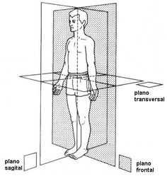 plano frontal: plano transversal: plano sagital: