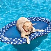 Spring Float Paddle Paws - Large