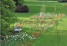 garden ideas from Belgium ; tulips in grass ; Gardenista