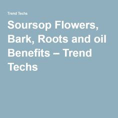 Soursop Flowers, Bark, Roots and oil Benefits – Trend Techs Oil Benefits, Roots, Learning, Flowers, Teaching, Royal Icing Flowers, Education, Flower, Florals