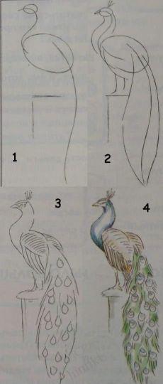 Pin von Nada S. auf draw tutorials Malen und zeichnen