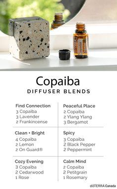 Copaiba Oil Uses, Copaiba Essential Oil, Essential Oils Guide, Essential Oil Diffuser Blends, Easential Oils, Essential Oil Combinations, Terra Oils, Doterra Blends, Doterra Diffuser