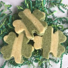 Gluten free, minty and naturally colored, these are reminiscent of the shamrock shakes!
