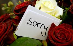 Get beautiful sorry cards hd images and pictures from my latest collection. I have presented here a new collection of sweet and lovely I am sorry images Sorry For Hurting You, Sorry My Love, Saying Sorry, Sorry Images, Miss You Images, Funny Images, I Miss You Wallpaper, Hd Wallpaper, Hurt By Friends