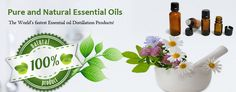 Natures Natural India Essential Oils
