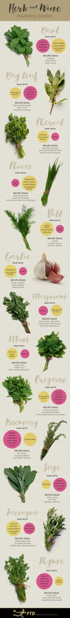 A Pairing Guide: The Best Wines For The Herbs You Cook With! - I love cooking with fresh herbs and I love wine, so what better way to learn about pairing the two than with this infographic!