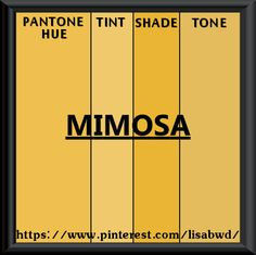 PANTONE SEASONAL COLOR SWATCH MIMOSA