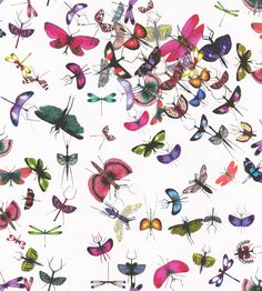 Mariposa Perroquet. wallpaper by Christian Lacroix