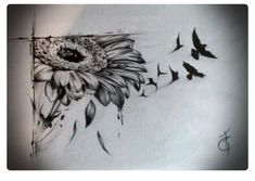 Flower  to Birds