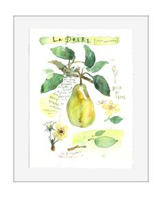 Custom art Fruit original watercolor painting von lucileskitchen, $200.00