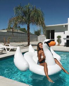 Swan life.❤️