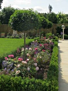 When planting Janine supplies all the plants detailed in her designs to bring the garden to life. She has gained a wealth of experience in plant sourcing. #GardenBorders