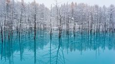 The Light Blue Pond,Hokkaido by Kent Shiraishi on 500px