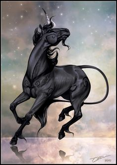 Black Unicorn.