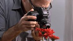 view course page for Lens-Reversal Macro Photography