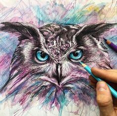 Owl. Wild Animals Drawings and Paintings. By Liam Cross.