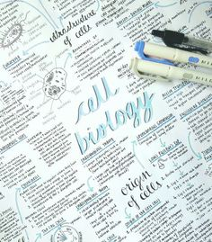 Thanks for visiting my studyblr. I am a pre-nursing studyblr. Revision Motivation, Study Motivation, Cute Notes, Pretty Notes, Revision Notes, Study Notes, Revision Tips, Gcse Revision, Study Organization