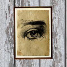 Ojo humano la impresión pergamino antiguo de anatomía ilustración Antiqued decoración AK168
