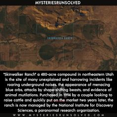 Wierd Facts, Strange Facts, Wtf Fun Facts, Paranormal Research, Paranormal Stories, Skinwalker Stories, Sarah Smiles, Army Humor, Secret Space