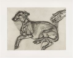 Recently saw this one in person. Lucian Freud, Pluto Aged Twelve