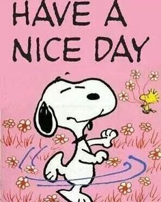 Happy Wednesday...have a nice day! #Wednesday #HaveANiceDay #Snoopy