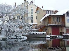 Дача, снег 20. 02. 2012