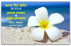 """Beach Save the Date Magnets - Plumeria on the Beach. A white sandy beach is enhanced by a white tropical flower. Your Name and Wedding Date are accented by the clear blue sky. This design is fully customizable and is a """"must have"""" for a Beach Save the Date.  http://www.magnetqueen.com/plumeria_order.htm"""