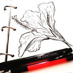 Июль, если ты не придешь как можно скорее, я разучусь рисовать. #ArtBySilmairel #MyArt #Art #Sketch #Doodle #LineArt #BlackAndWhite #Monochrome #Nature #Flower #Hibiscus #Blossom #FaberCastell