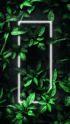 New Wallpapers Download For Mobile – Wallpaper Download