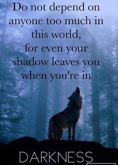 Wolf quotes and saying. The Wolf is a symbol of guardianship, instinct, loyalty, and spirit. The Wolf represents strong connection with instincts and intuition, high intelligence and communication – qualities we all should aspire to. Wisdom Quotes, True Quotes, Great Quotes, Words Quotes, Sayings, Loner Quotes, Quotes Quotes, Funny Quotes, Wolf Qoutes
