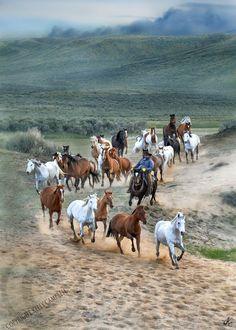 country living ~ Colorado run