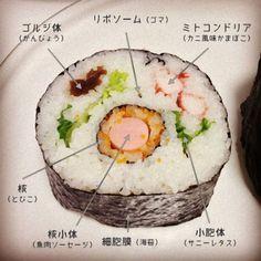 日本の科学者が作った寿司がすごい。博士の愛した細胞寿司─動物細胞バージョン