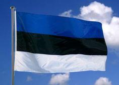The Estonian flag Estonia Flag, Baltic Cruise, Baltic Region, Estonia Travel, World Thinking Day, World Geography, Flags Of The World, National Flag, Baltic Sea