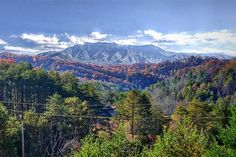 Mt. LeConte -- At 6,593 ft it is the third highest peak in the national park, behind Clingmans Dome and Mount Guyot