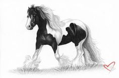gypsy vanner tattoos | Appaloosa Tattoo Design by Elvandia on deviantART