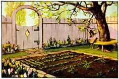 10 Steps to a Successful Garden University of Illinois Extension