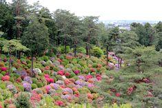 Oravanpesä: JAPANI 2019 osa 35: Sayonara. Shiofune Kannon-ji, Ome