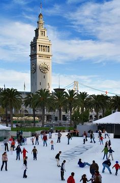 Ice Skating among Palm Trees!  The Embarcadero-San Francisco.
