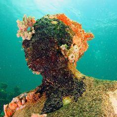 Give nature a chance and it will take over #aquanautsgrenada #scubadiving #rebreather #ccr #wreckdiving #wreck #puregrenada #discovergrenada #grenada #reef #reefdiving #snorkeling #divegrenada  #scubadiver #padi #island360 #paditv #padidiver #scubadivingmag #travel #divetravel #sportdiver #scubapro #sgu #travelandleisure #scubadivers #travelingtheworldd #bg_underwater