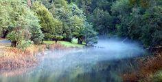 Fern Glade Reserve, Burnie