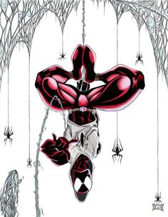 scarlet spider.