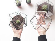 Little Geometric Terrarium Set / Icosahedron + Cuboctahedron / Handmade Glass Terrariums / Modern Planter Set for Indoor Gardening