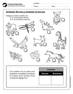 Animales diurnos y animales nocturnos
